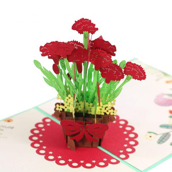 Carnation Pop Up Card