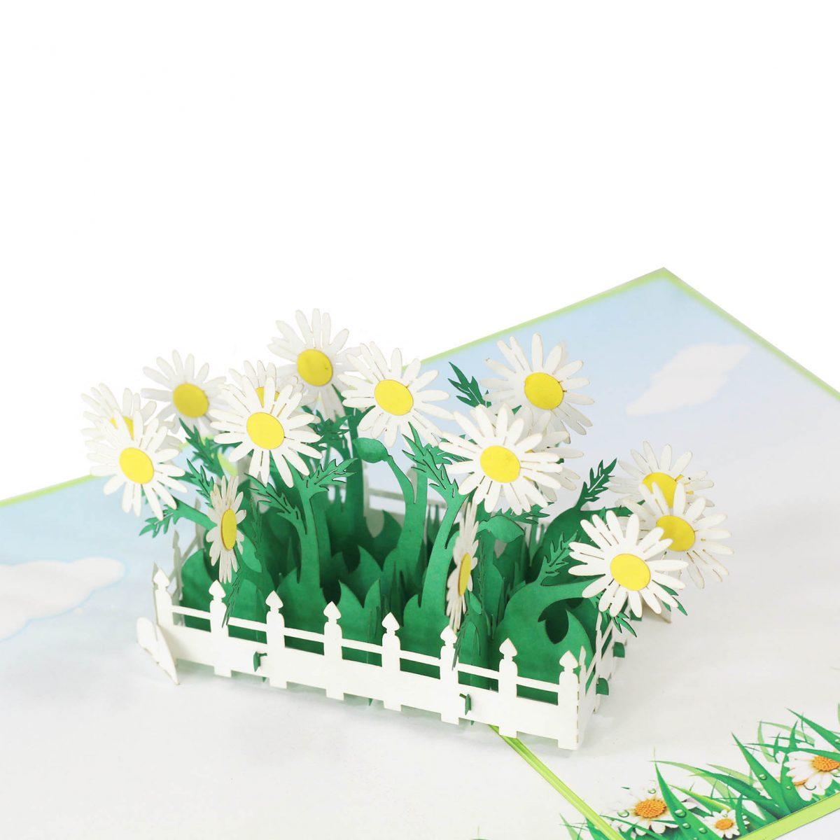 daisy pop up card