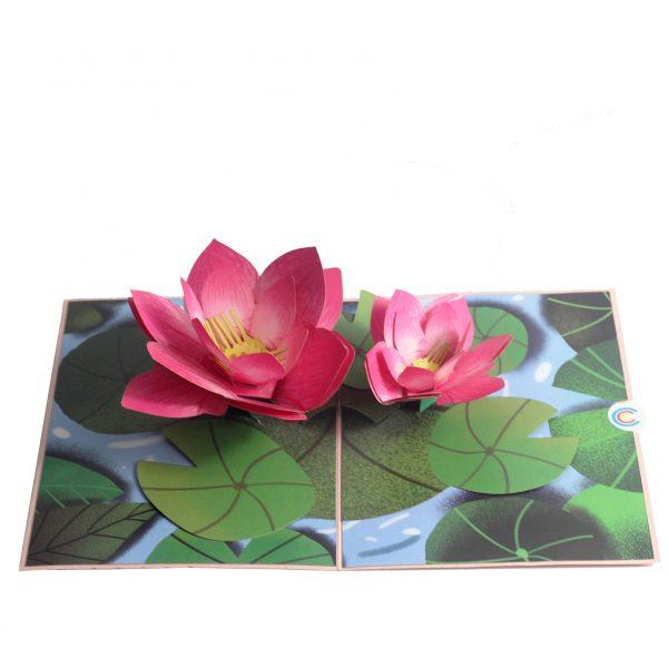 pink lotus pop up card